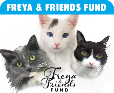 Freya and Friends Fund