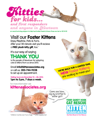 Kitties for Kids Flyer B1 12.2013xsm.jpg